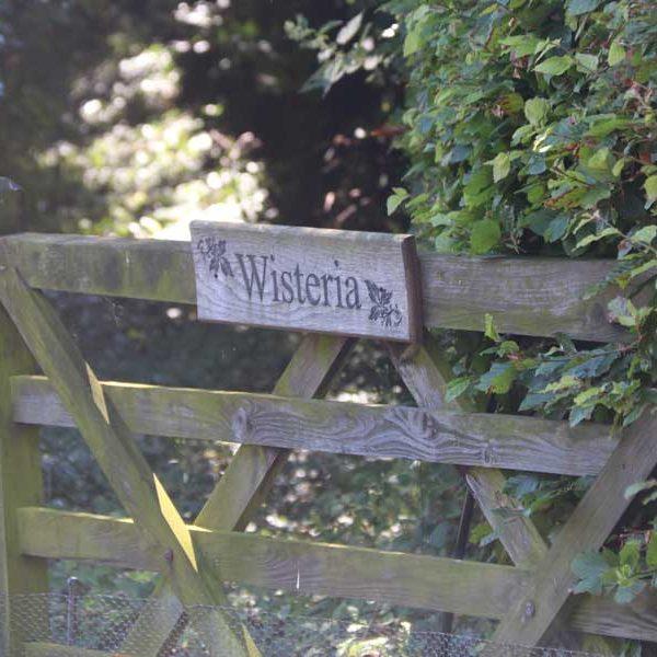 Wisteria Gateway